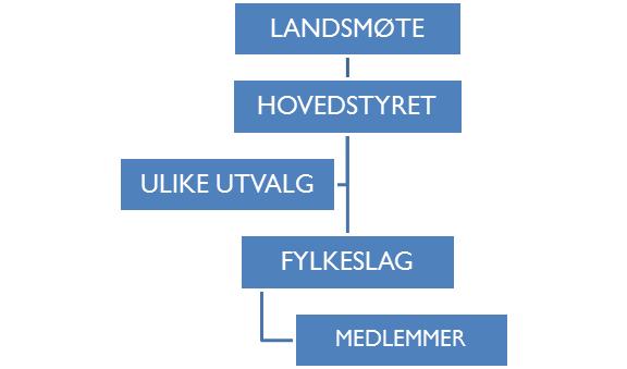 Organisasjonens oppbygningsform